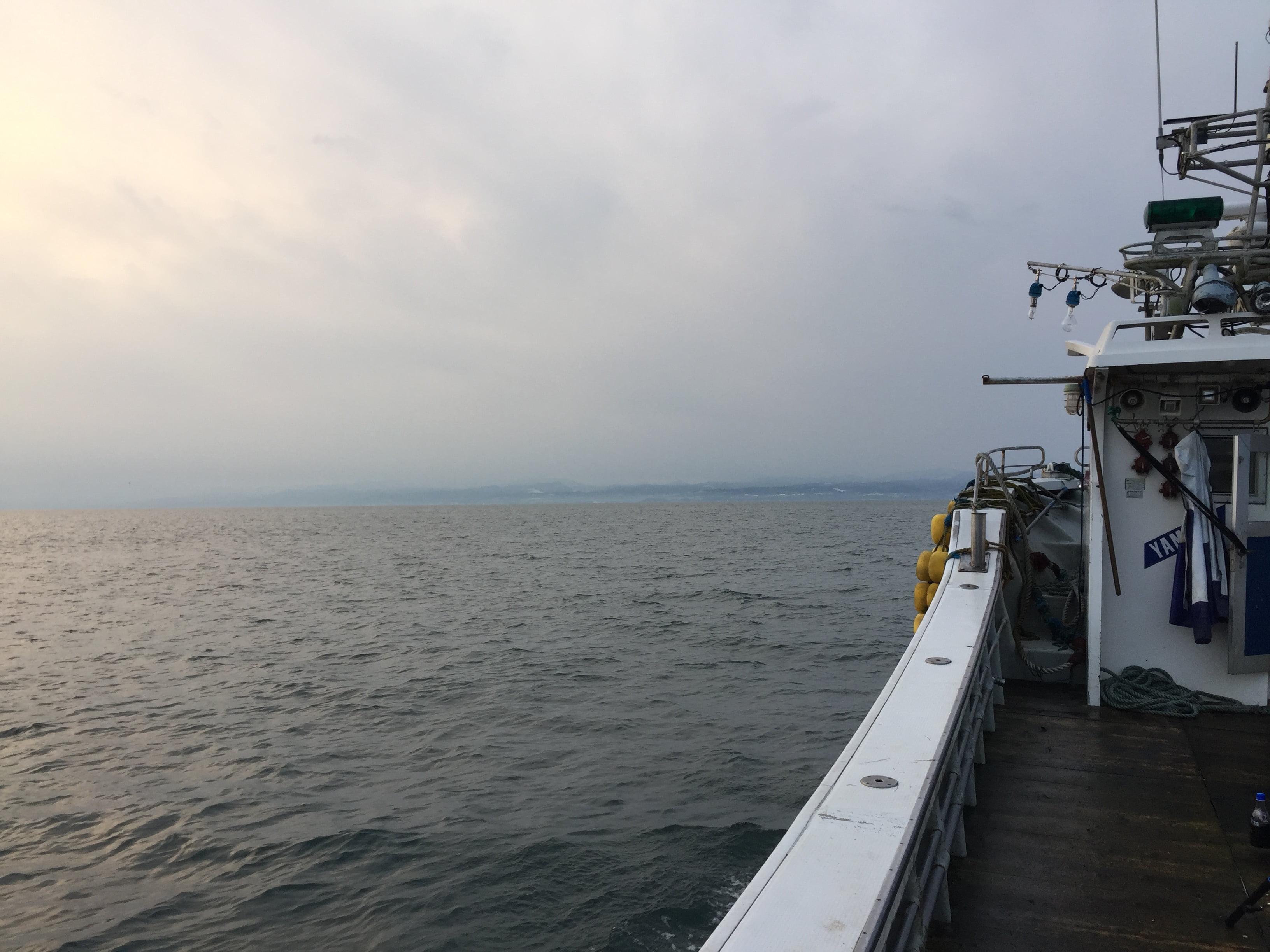 噴火湾 船サケ釣り釣果報告!2017年11月23日