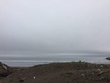 そろそろ噴火湾ヒラメも厳しいか。サクラマスは相変わらず。