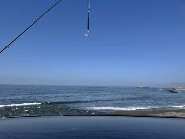 4月の道南海サクラ調査ポイント巡り!